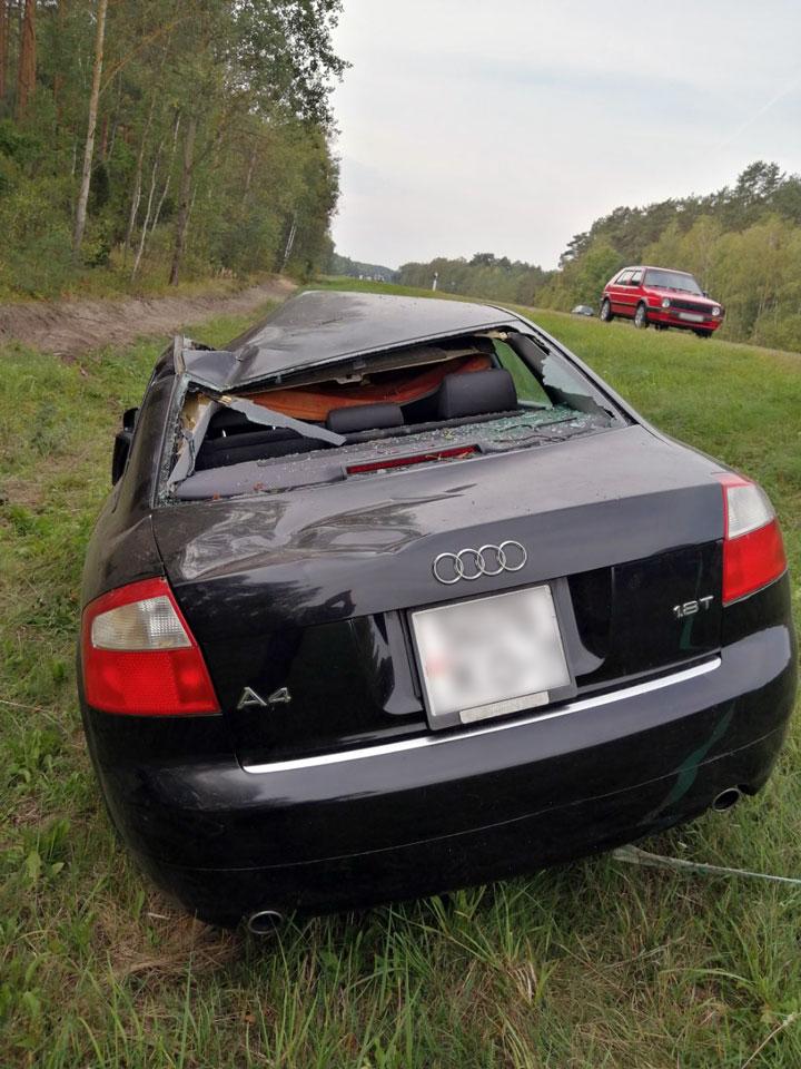 В Кобринском районе три автомобиля поочередно столкнулись с лосем