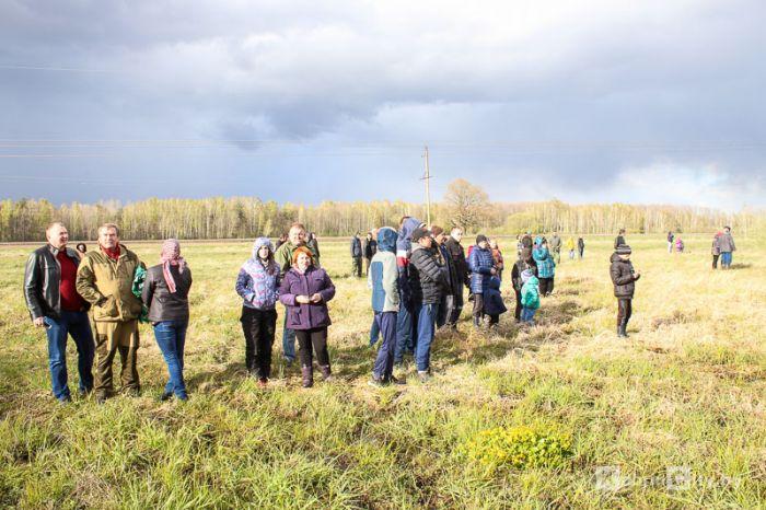 Дахловские болота 2017